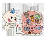 03-01-foetus-food-150px